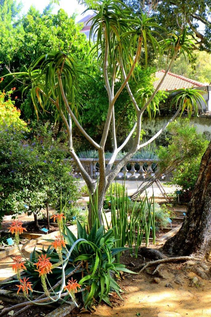 lisbonne des beaux jardins compagnie