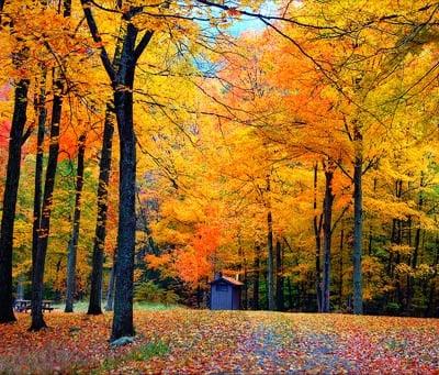 Us Fall Color Scenic Drive Guide Compare Com
