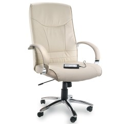 Massage Chair Pad For Car Kelsyus Pink Canopy Office Chairs: Heated Chairs