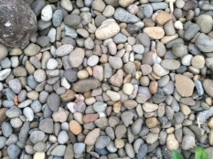 There are so many pebbles to choose from. Which one will be right for me?