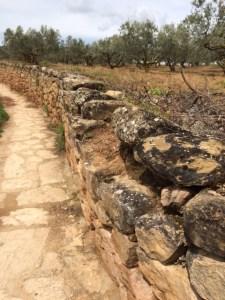 path & wall
