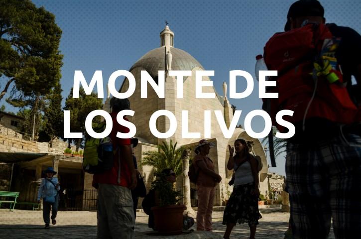 Monte de los Olivos.