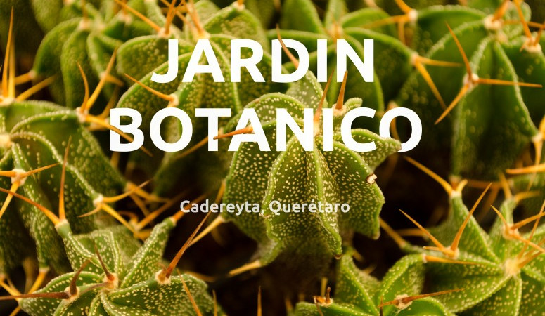 Jardín Botánico Regional de Cadereyta, Querétaro. Portada.