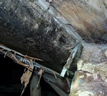 mold and rot in a Colorado Springs crawl space
