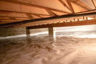 Clean a crawl space from pests