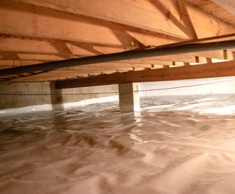 10 Ways A Clean Crawl Space Keeps Rodents Away