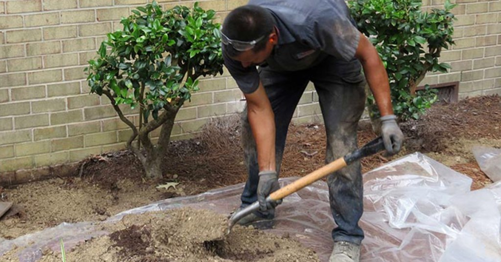 clearing your garden