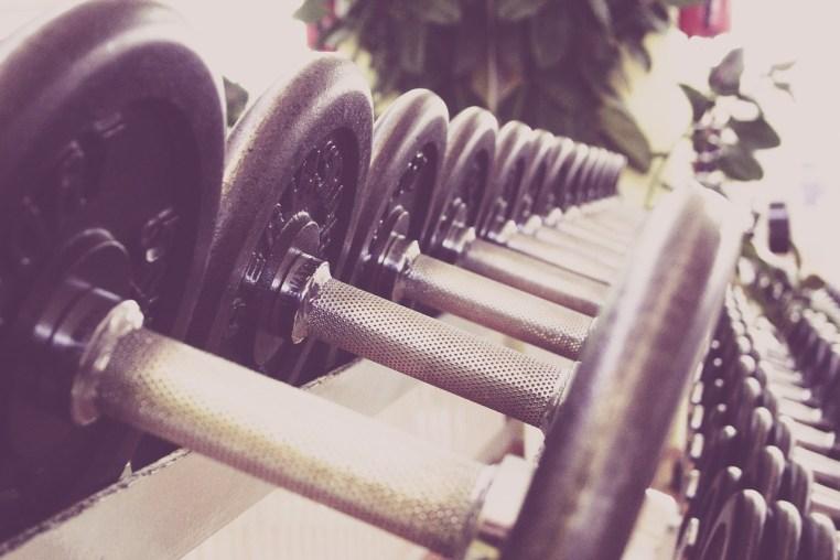Thy Gym