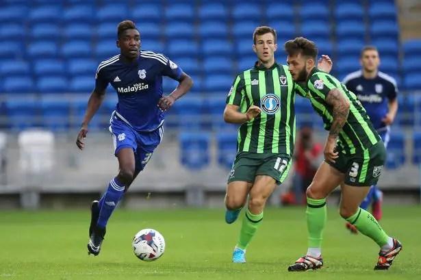 Sammy Ameobi Escapes Newcastle United Axe