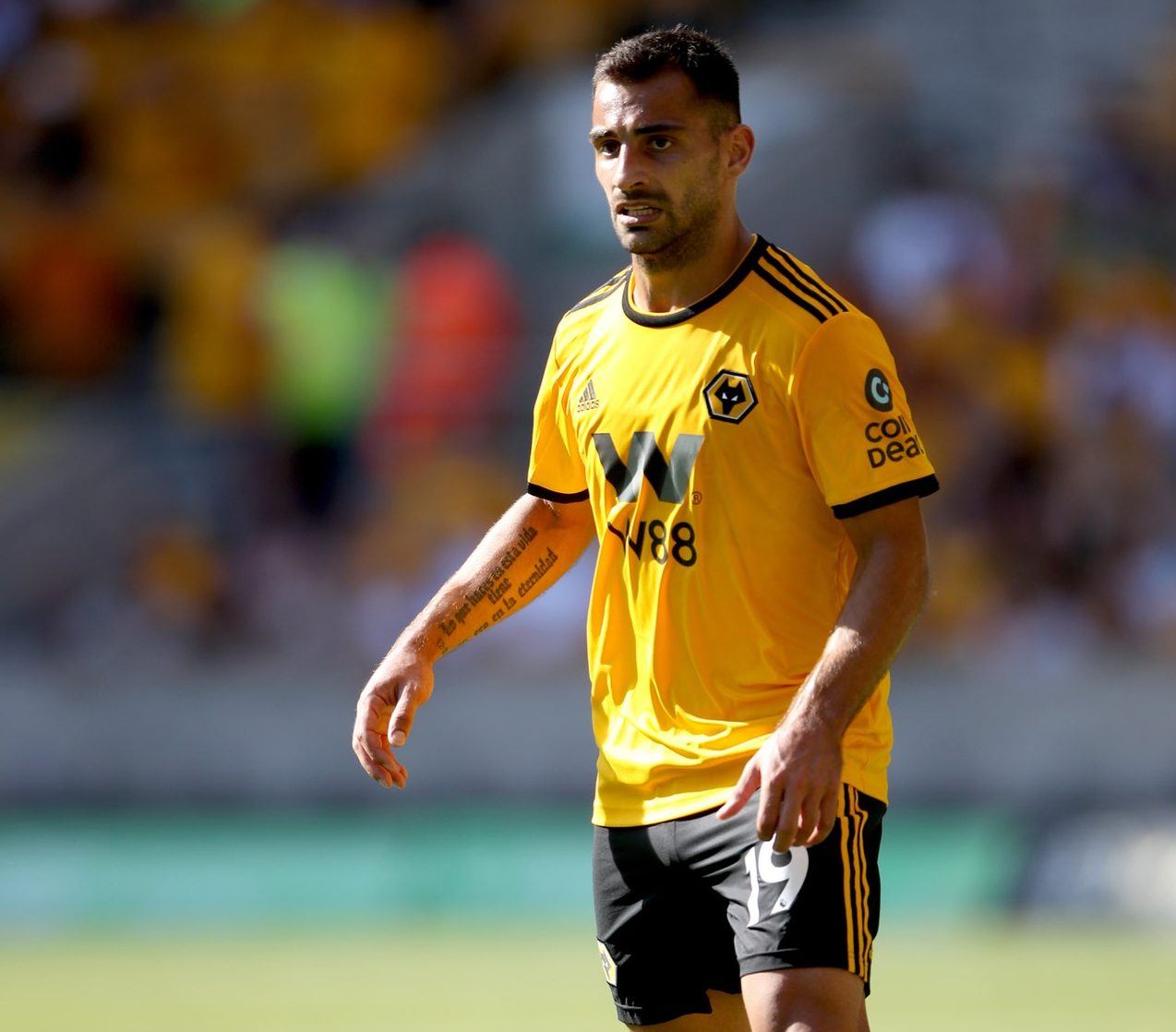 Wolves Rocked By Bonny Blow
