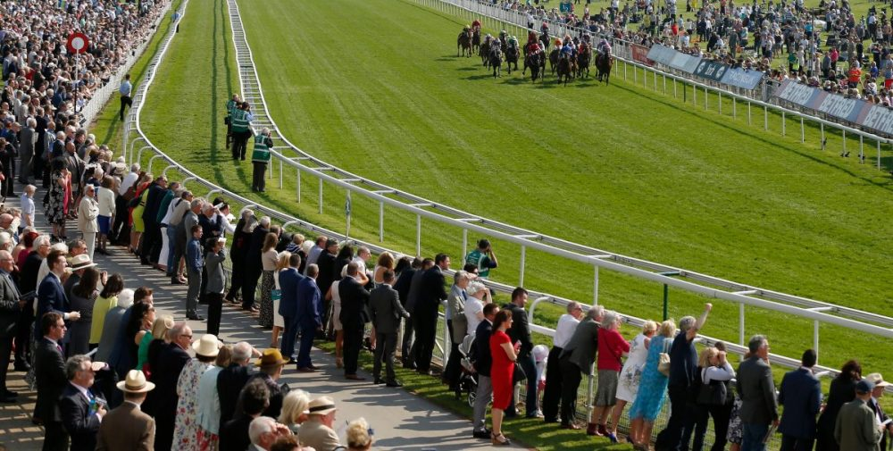 Sangarius Lined Up For York Outing