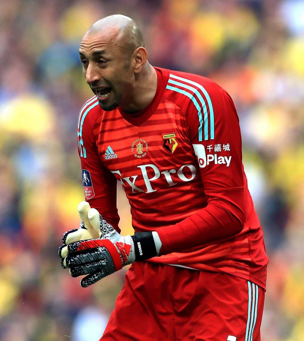 Gomes Signs New Watford Deal