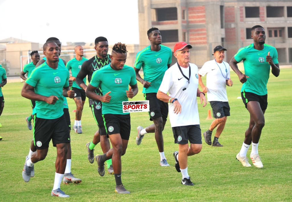 Westerhof: 'Eagles Must Compensate Me With AFCON 2019 Bronze Medal Tonight'