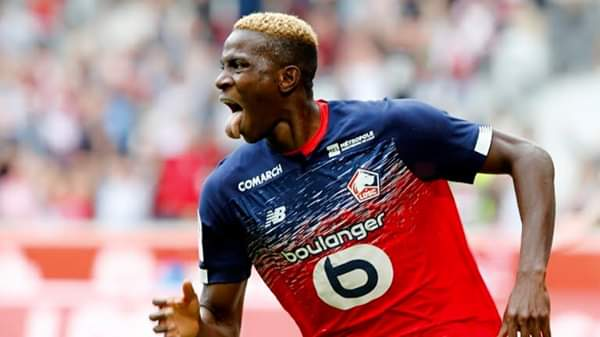Osimhen Revels In Perfect Start For Lille Vs Nantes
