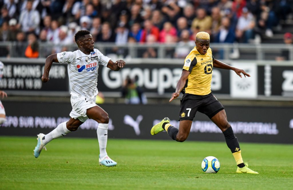 Osimhen Backs Lille To Bounce Back From Away Loss To Amiens