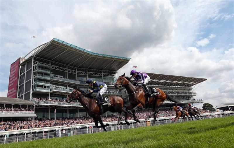 Dubawi Fifty Doubt For Ebor