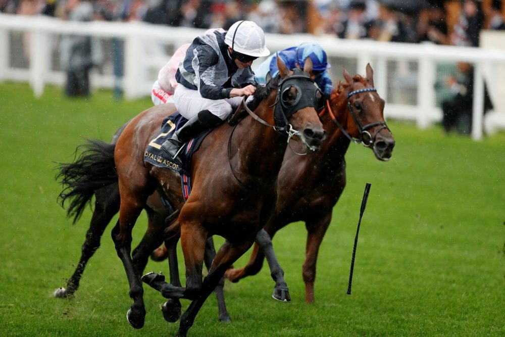 Molatham Under Consideration For Doncaster