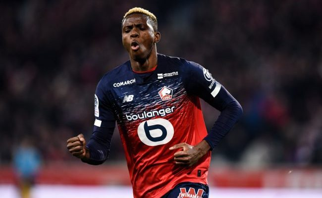 Osimhen Celebrates Lille Home Win Against Brest