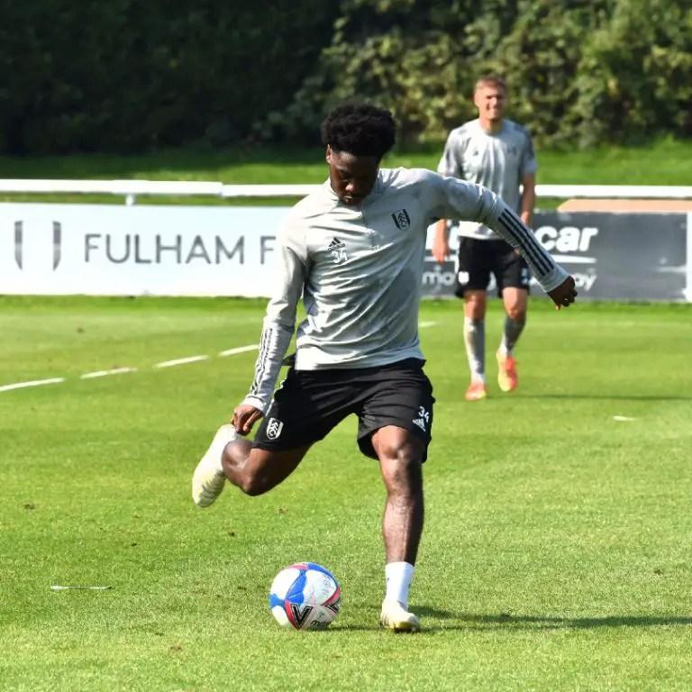 Carabao Cup: Aina Primed To Make Fulham Debut Vs Sheffield; Iwobi Targets 2nd Goal