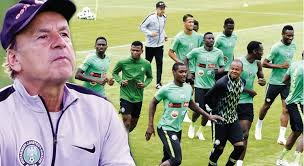 Super Eagles: Should Rohr Be Judged Based On Silverware Or Qualification Results?