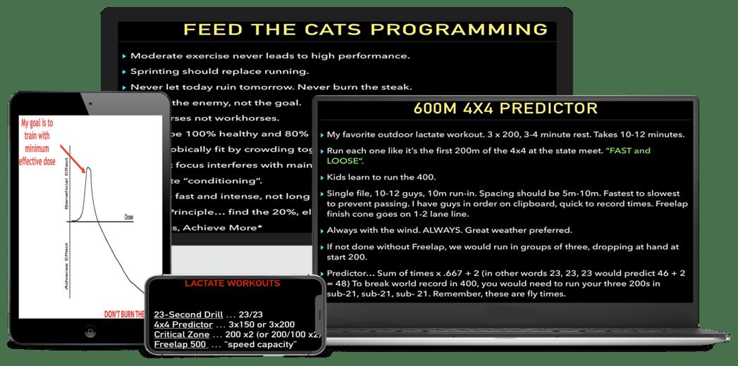 Tony Holler Feed the Cats 400