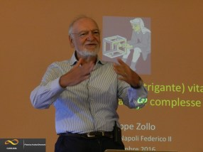Giuseppe Zollo - Complexity Management School