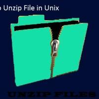 Unzip file in unix