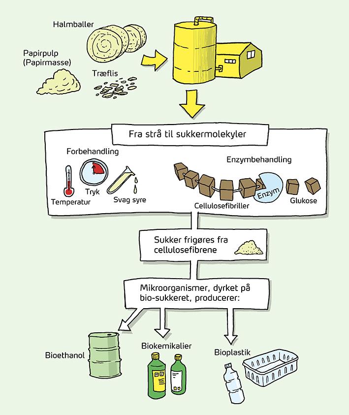 Bioøkonomi 4