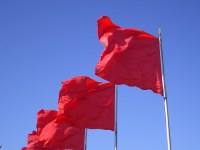 compliance and red flags