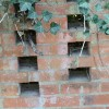 brick plants