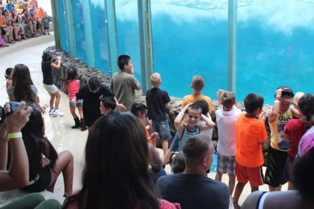 Oahu Sea Life Park Travel Kids Attractions Oahu