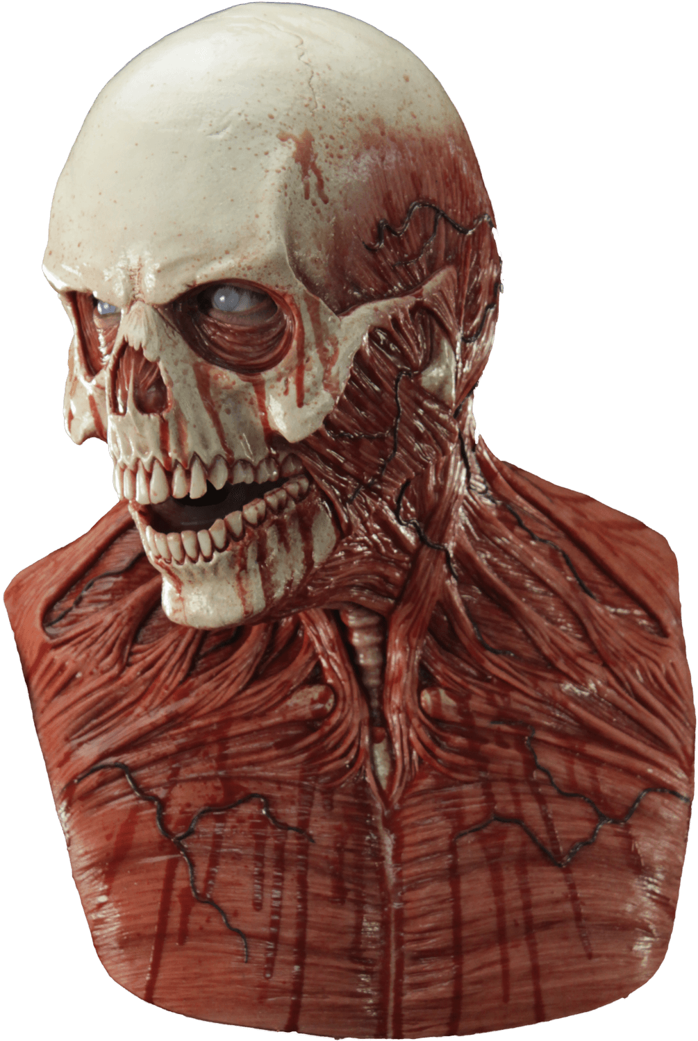 Yorick the Skull Silicone Mask  CFX