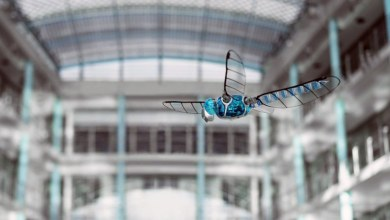 Photo of Bionic Carbon Fibre Dragonfly Drone