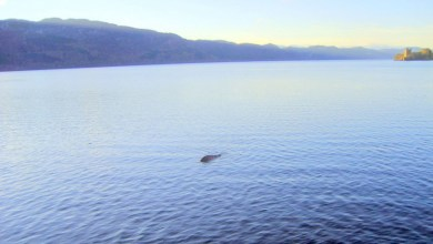 Photo of Loch Ness Monster was Fibreglass Hoax