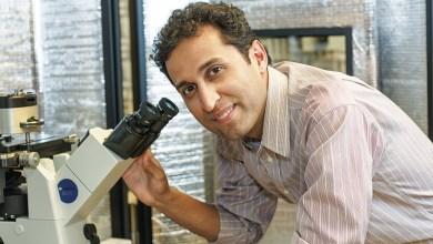 Photo of New Flexible Nano Fibre Created Thats Tougher Than Kevlar