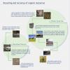 European Compost Network (ECN), la organización del compost europea
