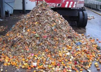 Separación de la Fracción Sólida Orgánica de los Residuos Municipales (FORSU)