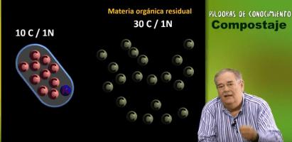 La importancia de la relación carbono-nitrógeno en un compost