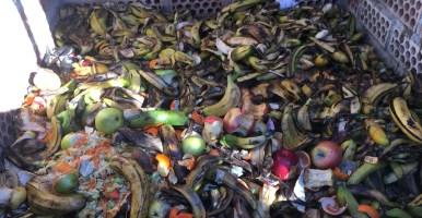 Nueva regulación sobre el compostaje comunitario