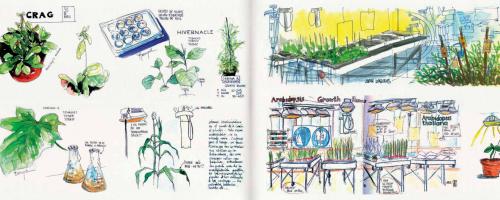 Dibujando la ciencia agrícola (Sketching Crag)