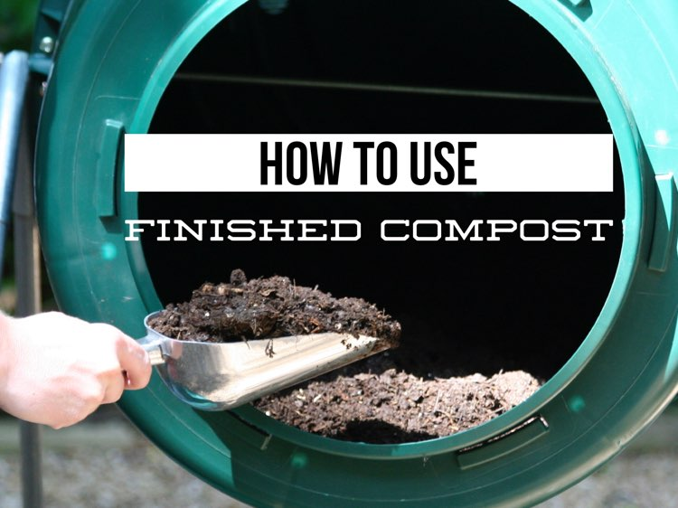 How to Use Compost in Your Yard and Garden