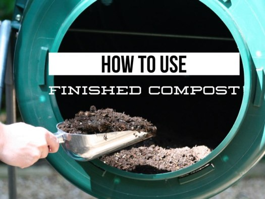 how to use compost the right way