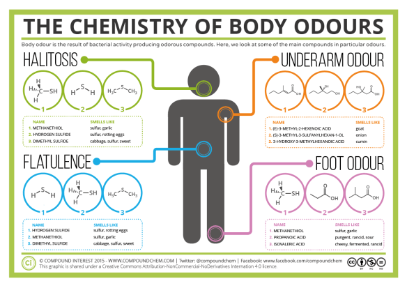 The Chemistry of Body Odours – Sweat, Halitosis, Flatulence & Cheesy