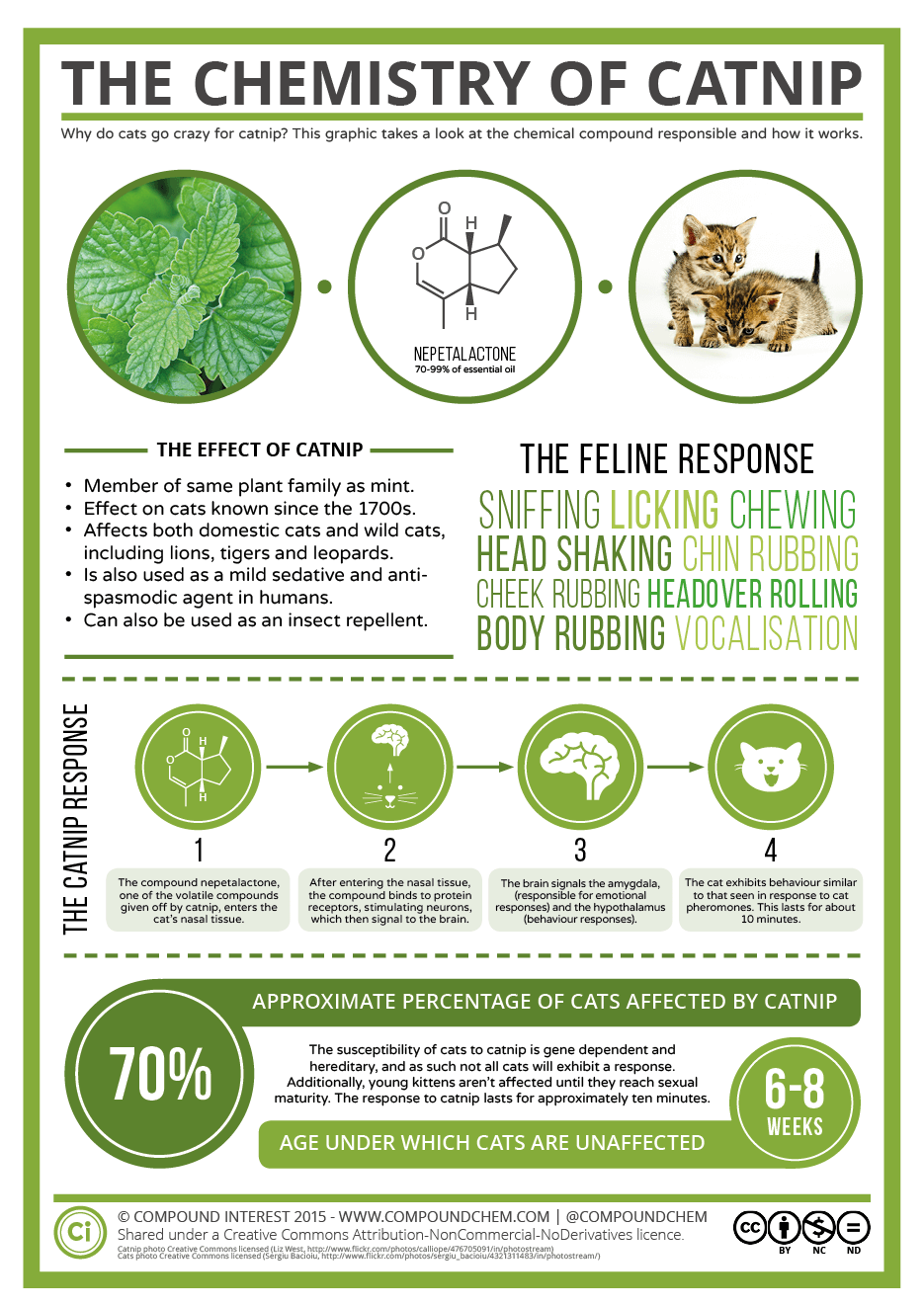 The Chemistry of Cats and Catnip