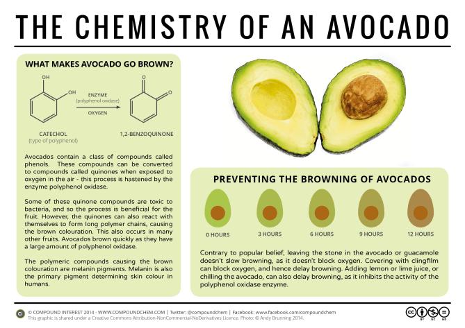 Avocado Ripening Chart - ovulation signs