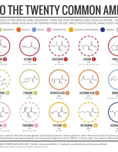 common amino acids  also  brief guide to the twenty compound interest rh compoundchem