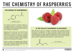 Raspberries, Weight Loss, & The Galaxy – The Chemistry of