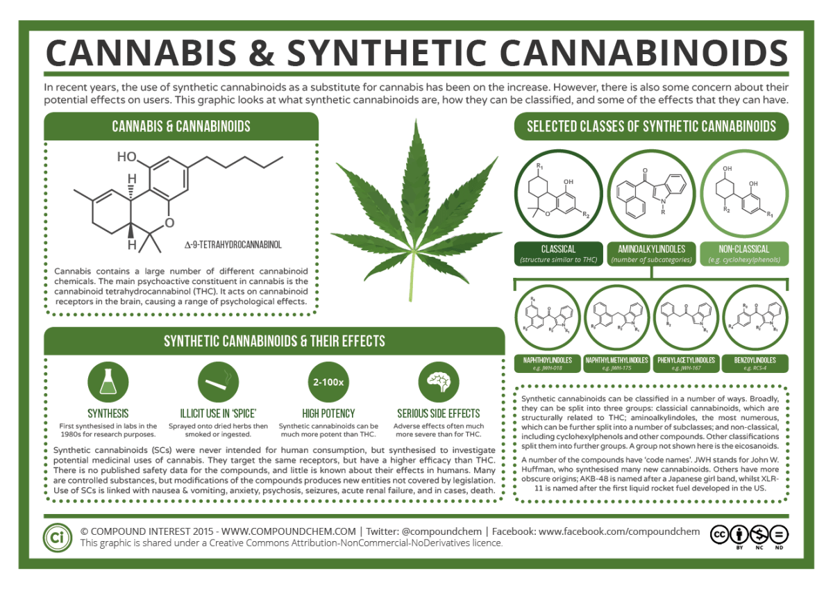 Cannabis & Synthetic Cannabinoids