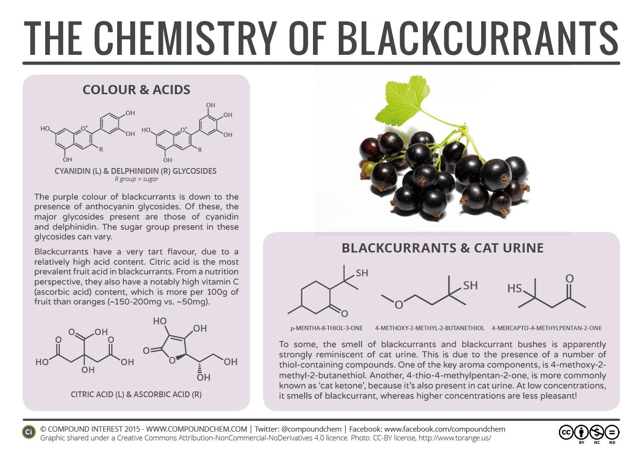 Blackcurrants & Cat Urine – The Chemistry of Blackcurrants