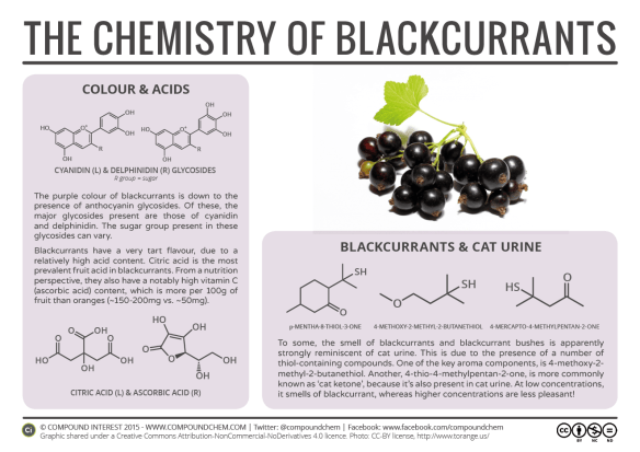 Food Chemistry – The Chemistry of Blackcurrants